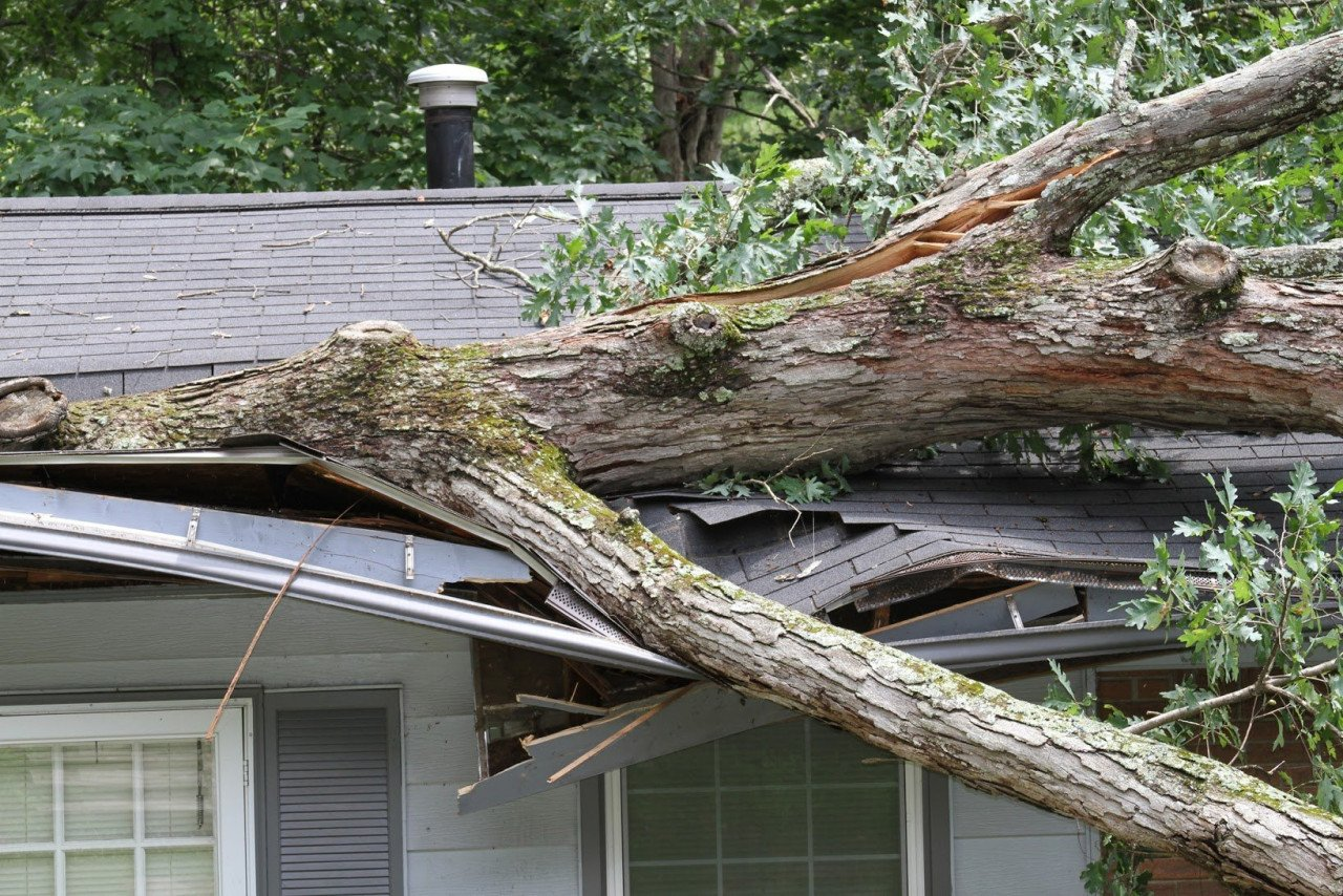 Seven Summertime Hazards to Homes in the Northeast Thumbnail Image