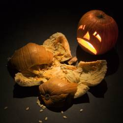 What Your Insurance Policy Will and Won't Cover This Halloween