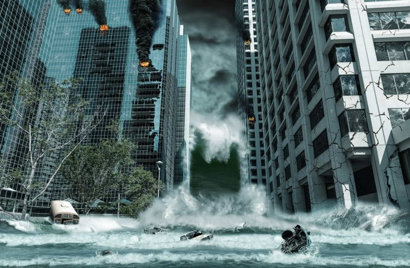 Surviving a Disaster